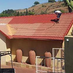 Roof Spray